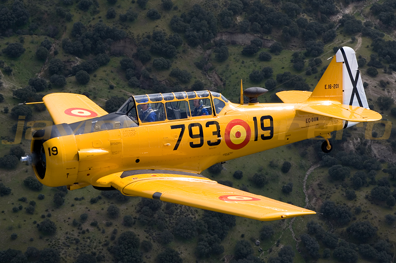North American T-6 TEXAN DUN – 1938